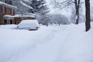 deep-snow-554956