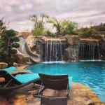 swimming-pools6