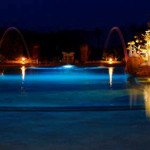 minks-award-pool